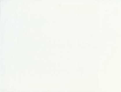 14.16.71 Brudetyl 50 meter pr. rulle